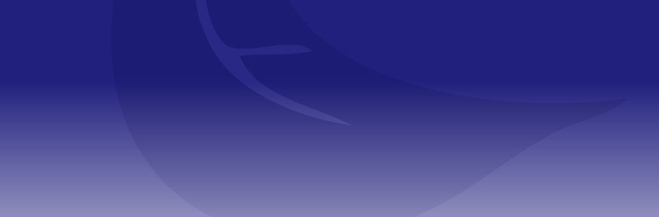 banner-02_background