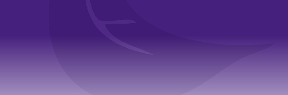 banner_01_background